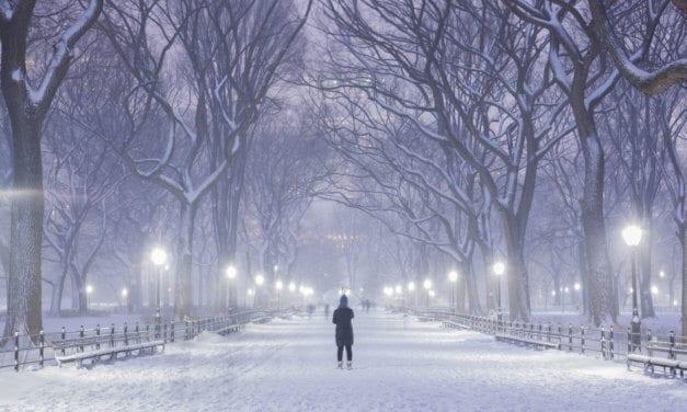 "Blow, Blow Thou Winter Wind"" — William Shakespeare"