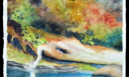 CLEAR LAKE WHITE LOG BY MARA THYGESON